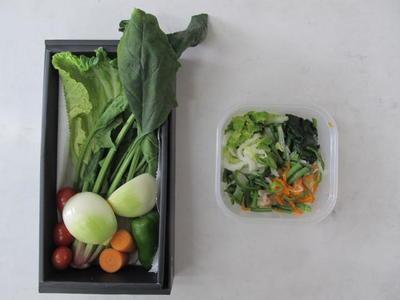 1日の野菜の量